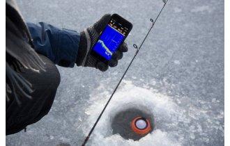 Какой эхолот для рыбалки с берега или зимой лучше? Как его выбрать?